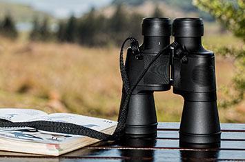 Birdwatching Equipment Travel Agent Platform
