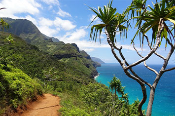 Hiking Trail Hawaii