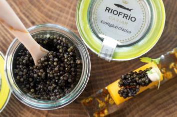caviar spain