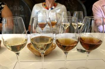 Montilla Spain Wine Gourmet Tour of Andalucia