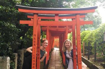 shrine tokyo