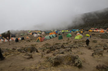 kilimanjaro tented camp