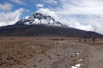 kilimanjaro plains