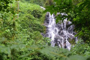 waterfalls nyungwe